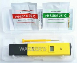 Electronic ph Pen